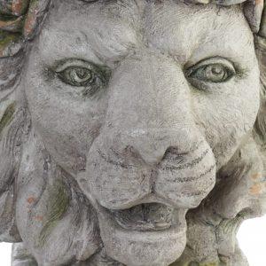 macereto huesca leon